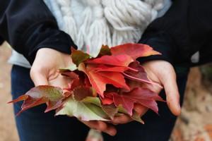 toni marsala autunno